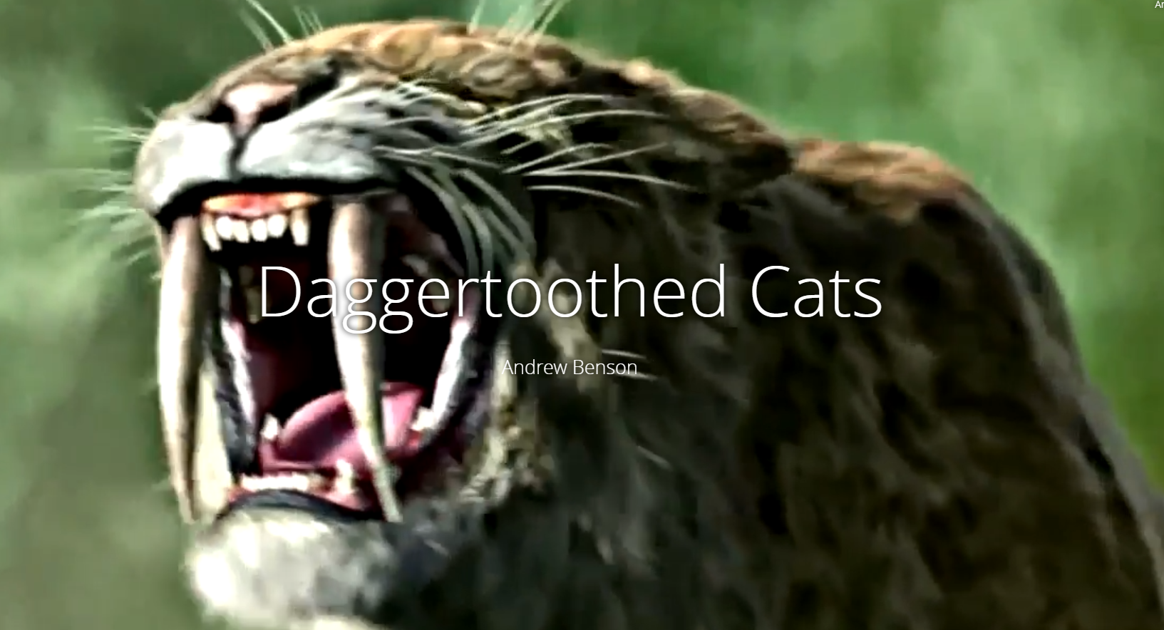 Daggertoothed Cats